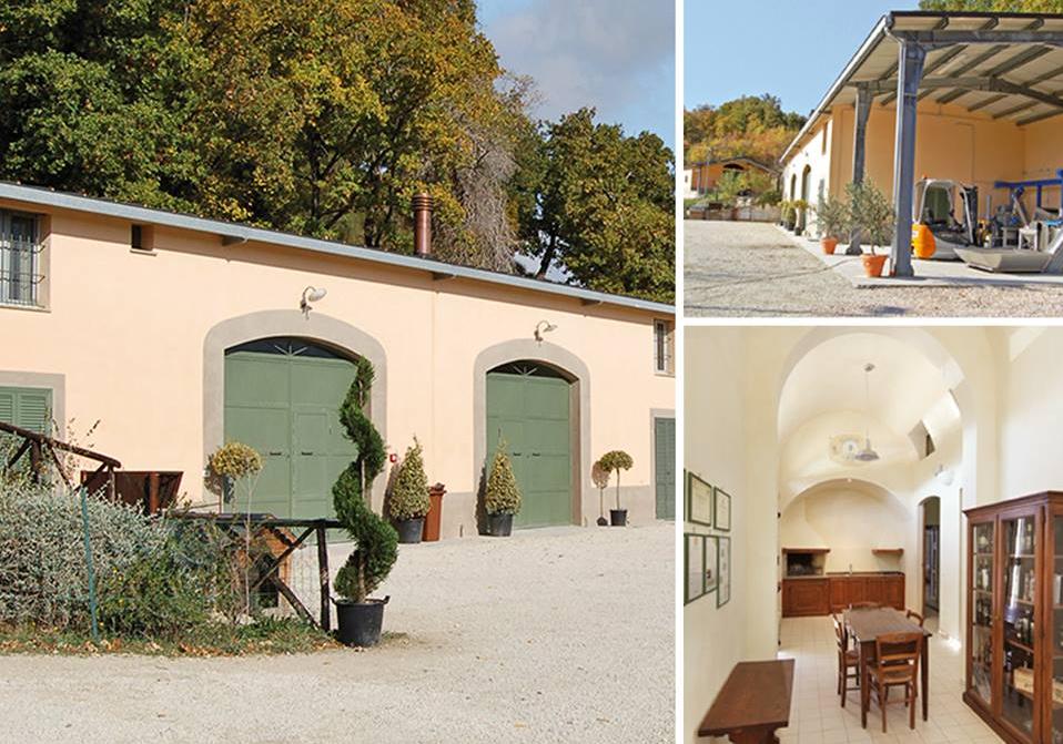 Soggiorno in Umbria Visitare un frantoio vicino a Assisi ...
